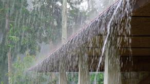 El Niño May be Coming, Are you Prepared?