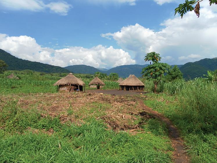 Lototuru huts Uganda.png