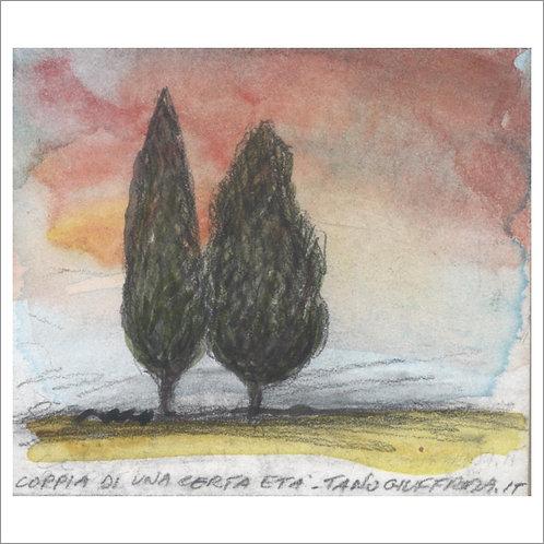 souvenirItaly CIPRESSI Terra di Toscana - UNICO