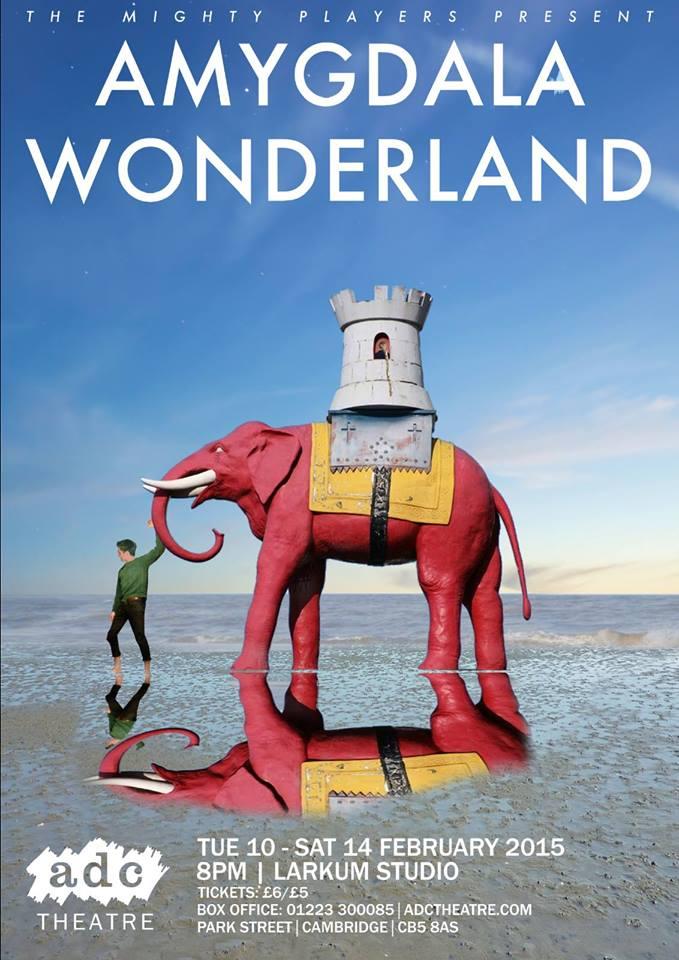 Amygdala Wonderland
