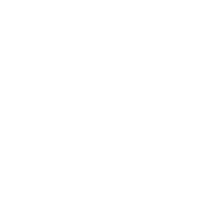 JUMP INTO REALITY