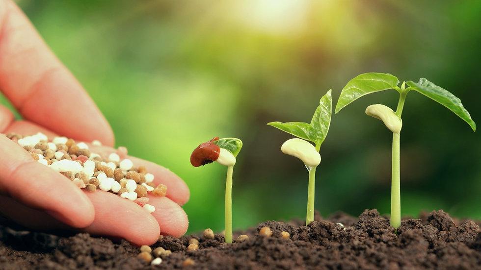 fertilizer-1.jpeg