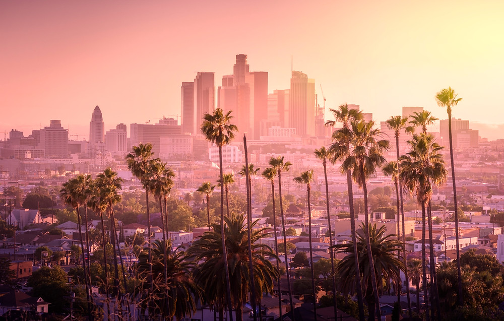 downtown los angeles in distance with palm trees in front