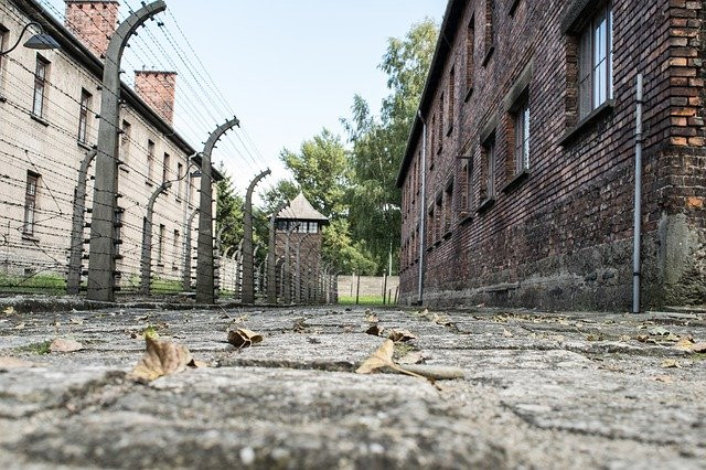 Barbed wire separates a red brick building and a white brick building in the Auschwitz concentration camp in Poland.