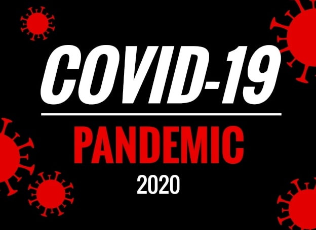 Graphic that says COVID-19 Pandemic 2020