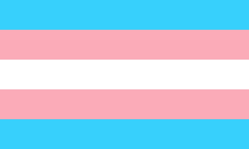 Transgender flag with two light blue and two pink stripes, and one white stripe.