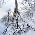 Variation sur Tour Eiffel 02