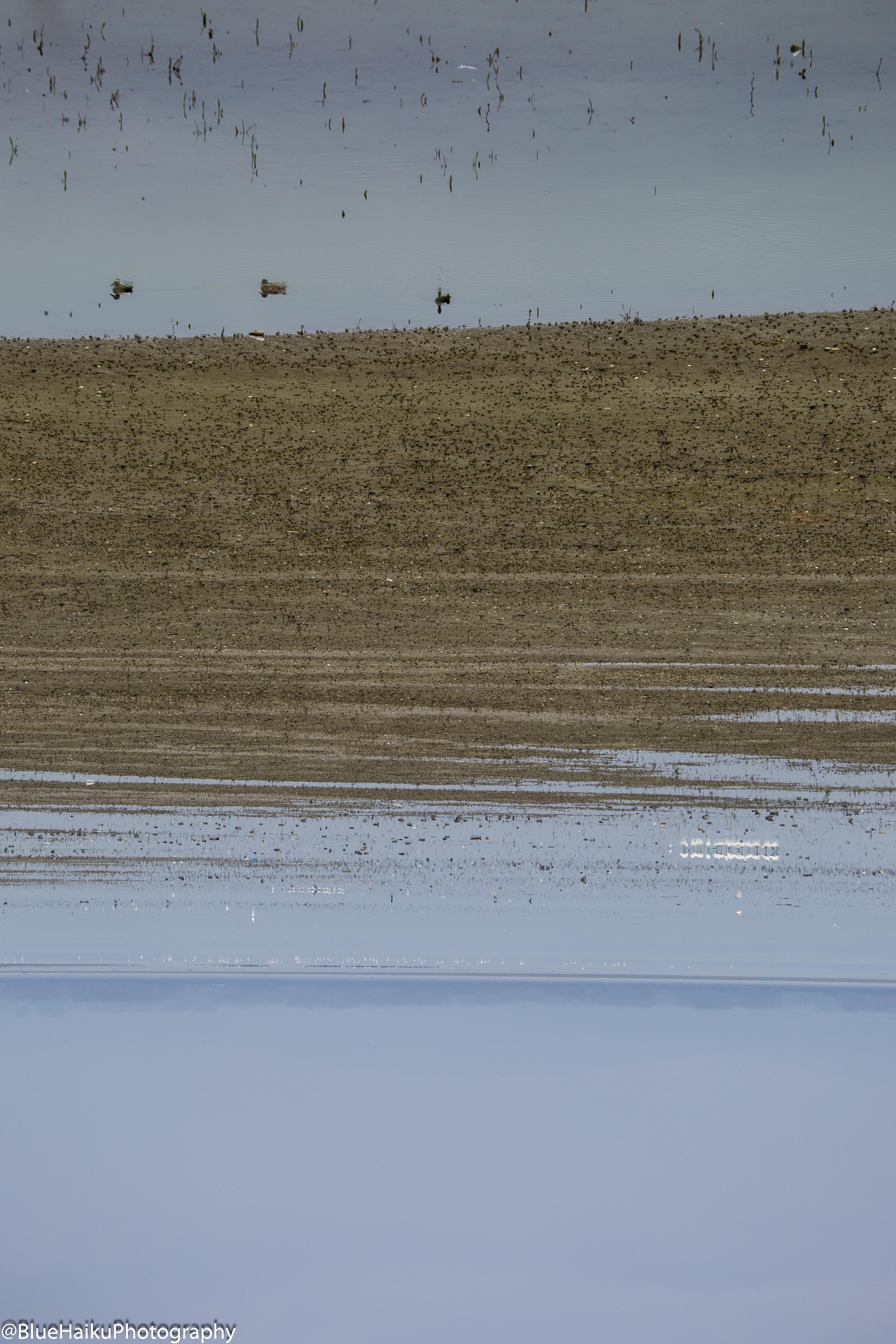 Kerkini Lake_TheAntipodes