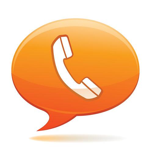 Phone Consultation 45 minutes