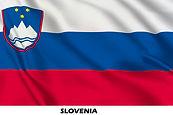 flag slovenia x.jpg