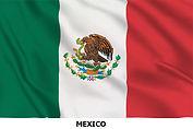 flag mexico x.jpg
