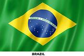 flag brazil x.jpg