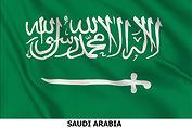 flag saudi arabia x.jpg
