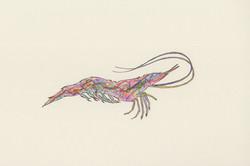 Electric Shrimp
