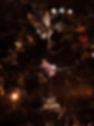 avignon 9.jpg