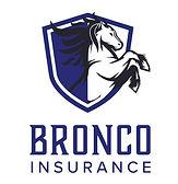 BroncoInsurance_Seconddary_FullColor black horse.jpg