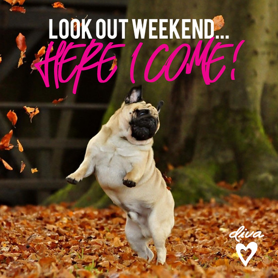 Have a fab weekend everyone love The Team