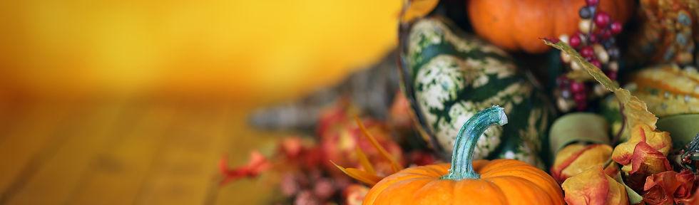 HomePageSlider_Thanksgiving.jpg