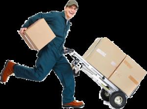 carrinho-entrega-300x223.png