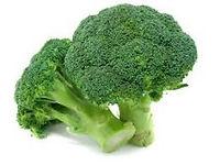 Broccoli Photo.jpg