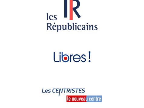 Les Républicains, Libres ! et Les Centristes - Le Nouveau Centre investissent Susan Canelas-Drezet