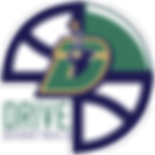 West Michigan Drive Basketball Alumni