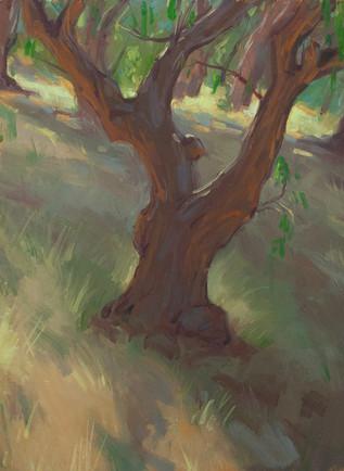 Tree 2020