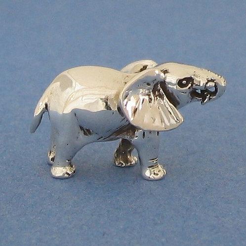 Elephant, medium
