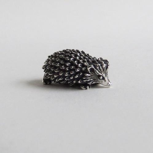 Hedgehog walking, small