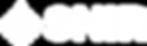 logo snir- white.png