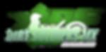 DSMS Logo OG.png