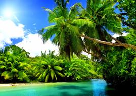 tropical-nature-4k-wallpaper.jpg