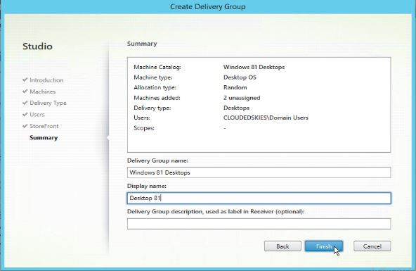 Delivery group summary and name, display name and description