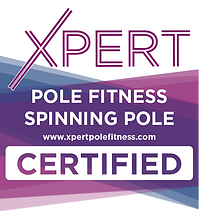 Pole Fitness Spinning Pole.png