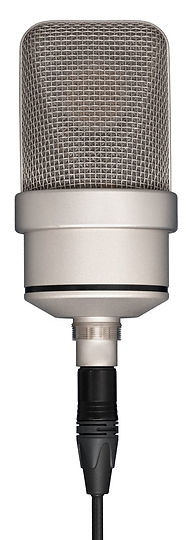 Professional microphone hanging on the c