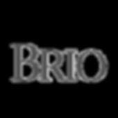 Brio Logo.png