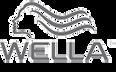 logo-wella.png