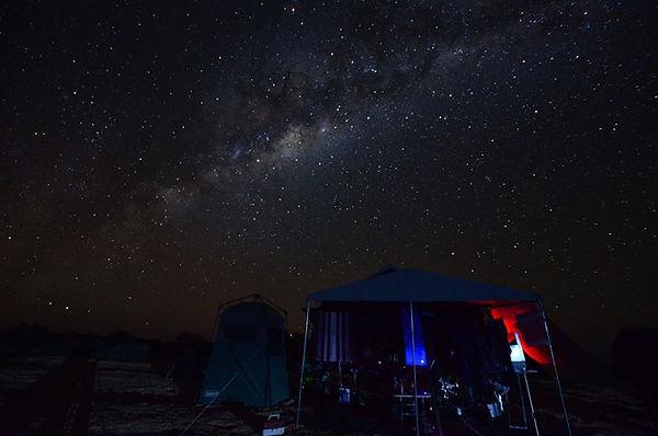 trev treloar stars.jpg