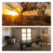 homestead pics.jpg