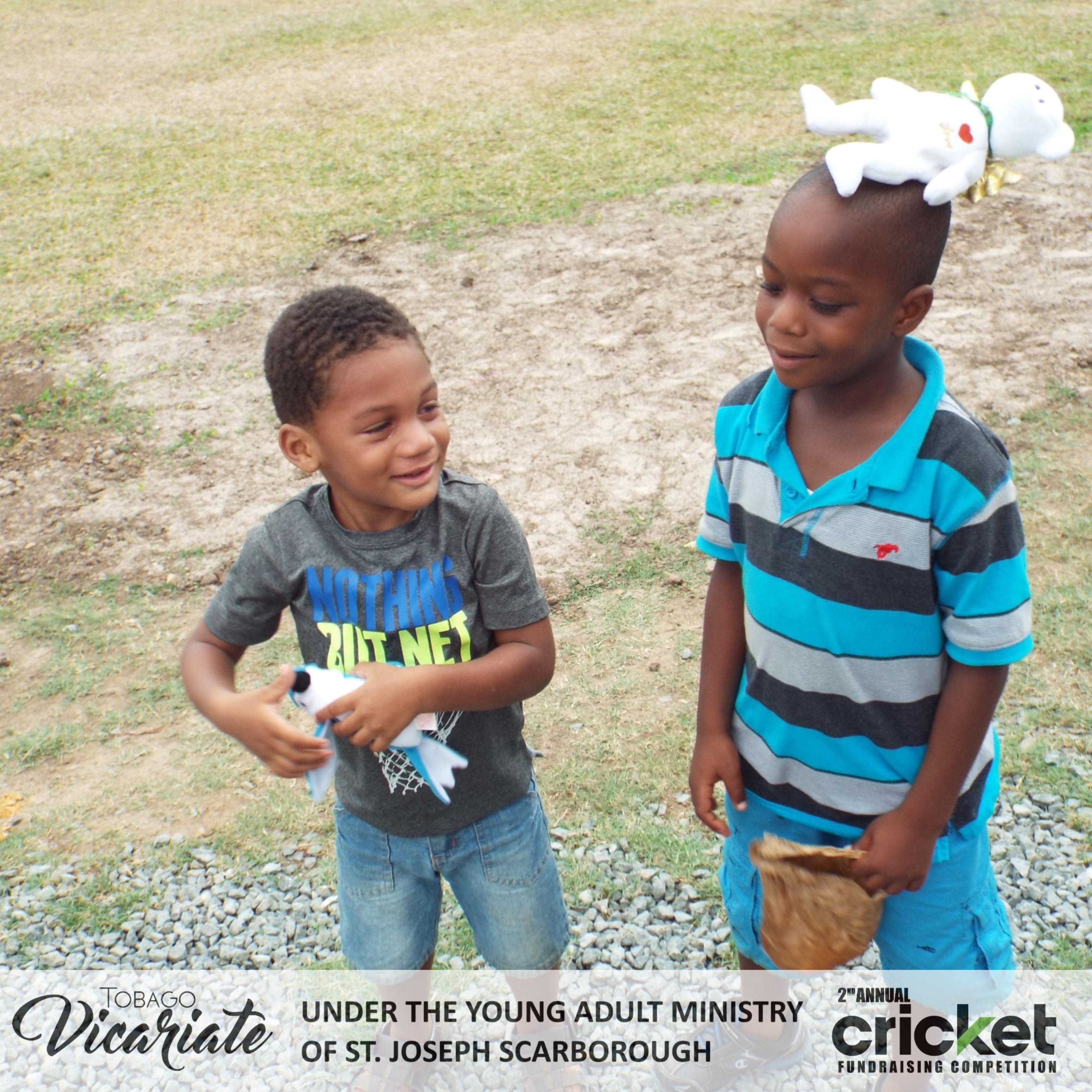 YAM Cricket (87)