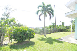 Outside - Scenic View