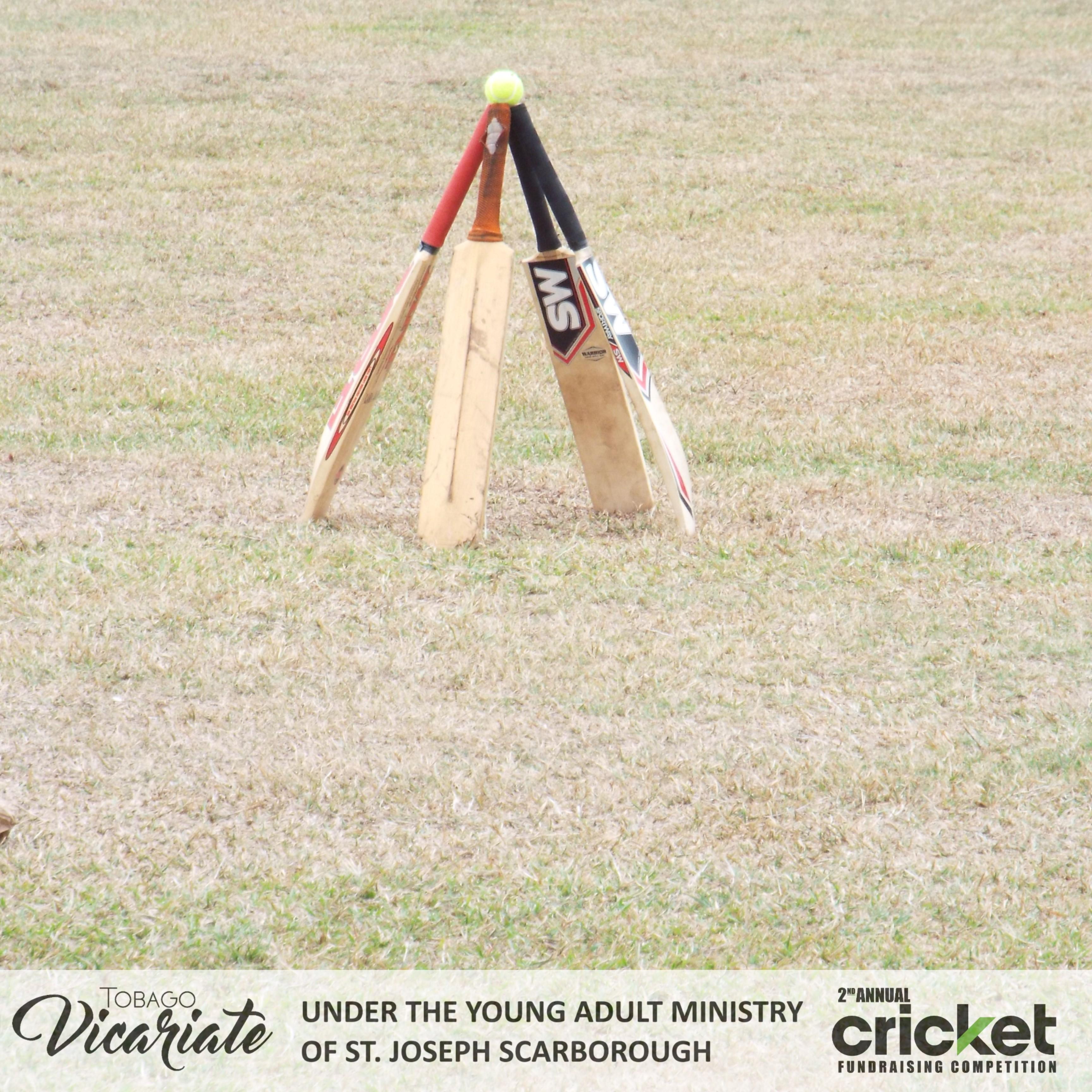 YAM Cricket (16)