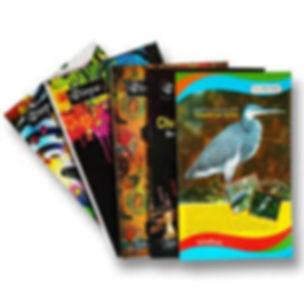 note books 2.jpg