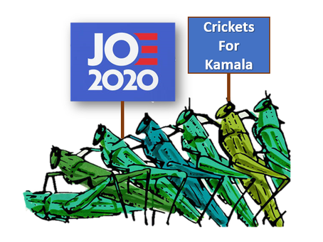 Record Number of Crickets Tune In For DNC Convention