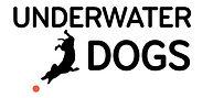 UWD_logo2blue2.jpg