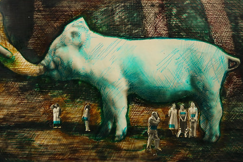 Large Pig Photograph print - signed