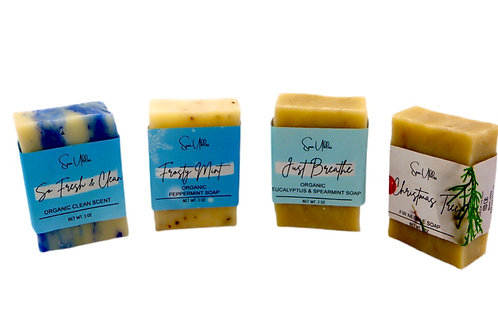 Holiday  Collection Soap Kit