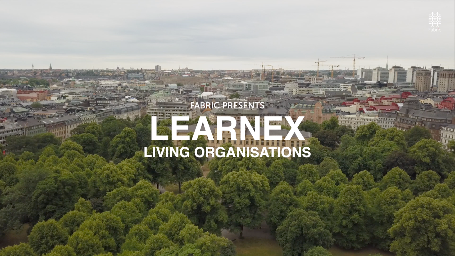 LearnEX by Fabric
