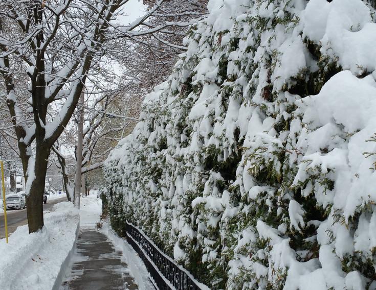 Winter in Mount Morris