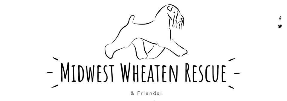 midwestwheatenrescue